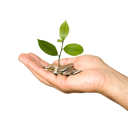hand with money: Hand with tree growing from pile of coins