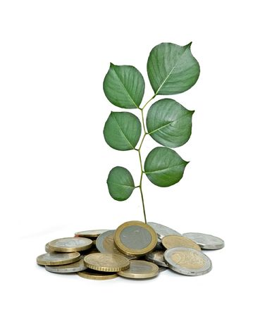 ecosavy: Tree growing from pile of coins Stock Photo