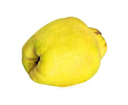 membrillo: Membrillo (manzana dorada) aislada sobre fondo blanco  Foto de archivo
