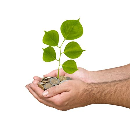 Palms with a tree growng from pile of coins Stock Photo - 5709435