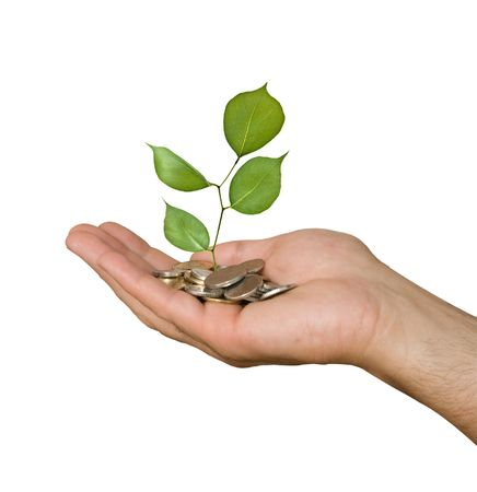 Palm with a tree growing from pile of coins Stock Photo - 5797153