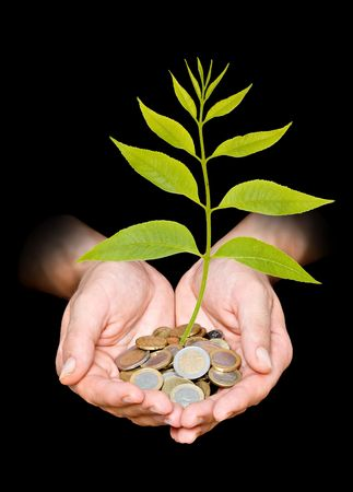 ecosavy: Hand with tree growing from pile of coins