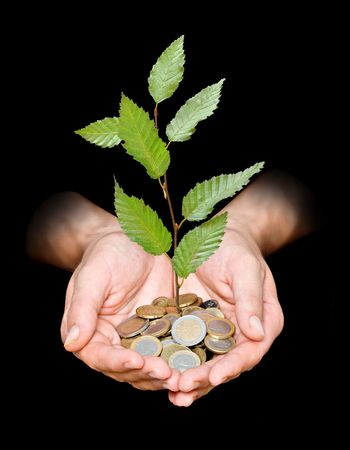 carbon footprint: Hand with tree growing from pile of coins