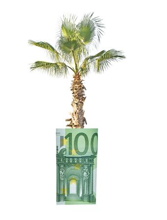 Palm growing from folded euro Stock Photo - 6219313