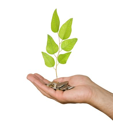 Palm with a tree growng from pile of coins Stock Photo - 6641115