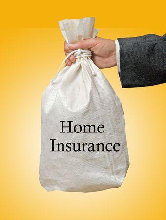 insurer: home insurance