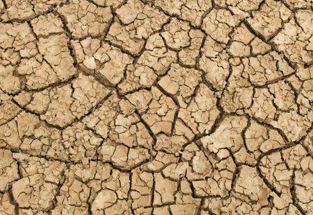 Tierra estéril en verano  Foto de archivo