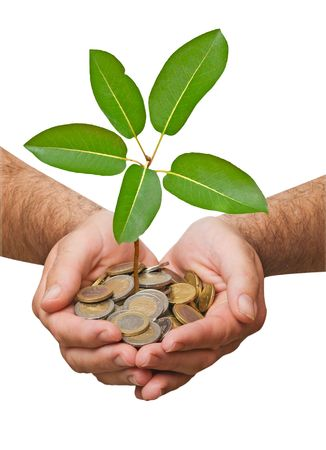 Palms with a tree growing from pile of coins Stock Photo - 6819416