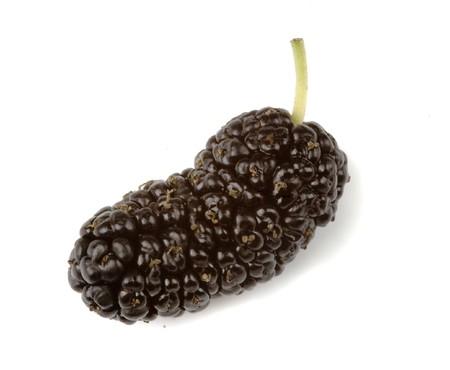Black mulberriy isolated on white background photo