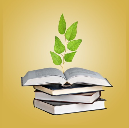 Tree seedling growing from an open book photo
