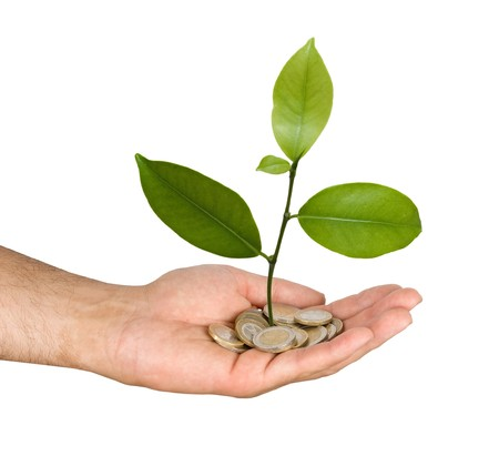 Palm with a tree growng from pile of coins Stock Photo - 7320639