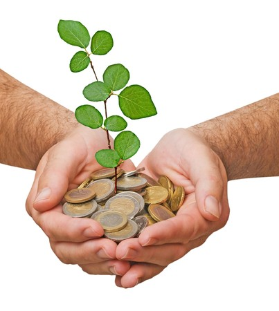 Palm with a plant growng from pile of coins Stock Photo - 7320647
