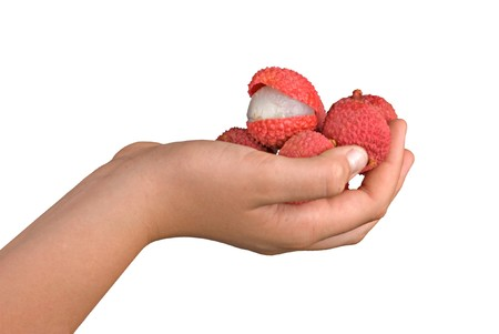 Lychees in hand Stock Photo - 7375558