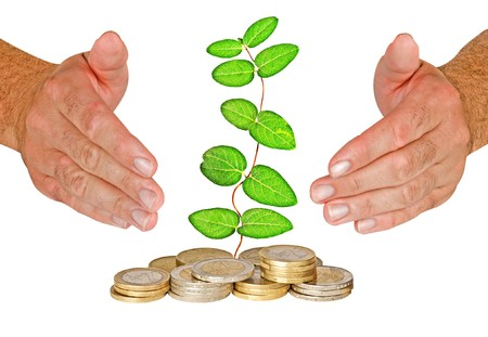 ecomomical: Hands protecting vine growing from pile of coins