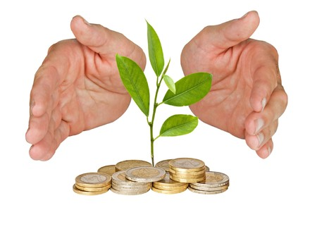 ecomomical: Hands protecting tree growing from pile of coins