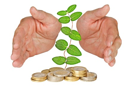Hands protecting plant growing from pile of coins Stock Photo