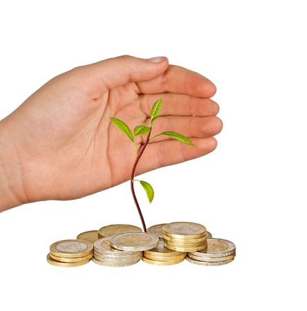 ecomomical: Hand protecting avocado seedling growing from pile of coins