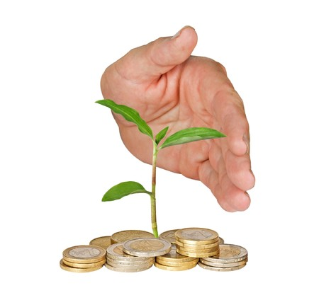 ecomomical: Hand protecting tree growing from pile of coins