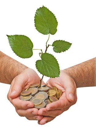Palms with a tree growng from pile of coins Stock Photo - 7643371