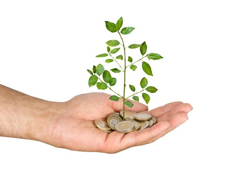 Palm with a tree growng from pile of coins Stock Photo - 7643358