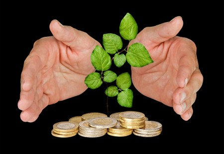 ecological problem: Hands protecting tree growing from pile of coins