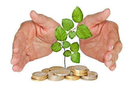 arbol de problemas: Manos proteger el �rbol crece desde el mont�n de monedas
