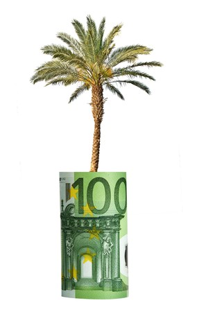 Palm growing from euro banknote Stock Photo - 7789592