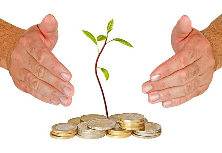 ecomomical: Hands protecting avocado seedling growing from pile of coins