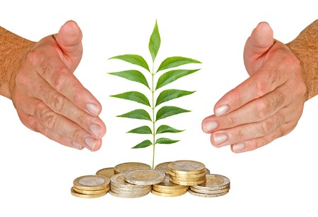 ecological problem: Hands protecting seedling growing from coins Stock Photo