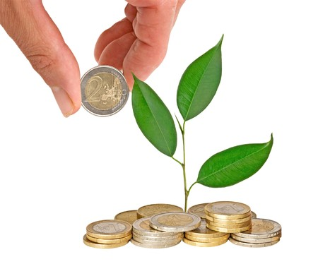 Tree growing from coins Stock Photo - 7943576