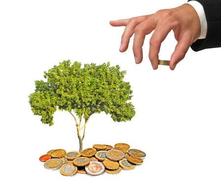 ecomomical: Tree growing from coins