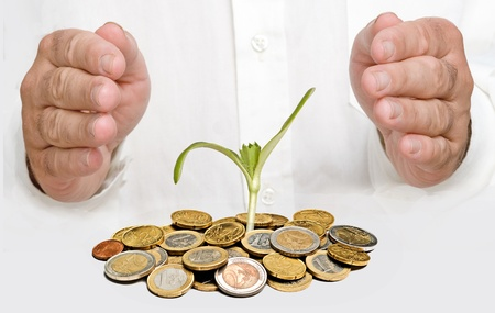ecomomical: Hands protecting sprout growing from pile of coins