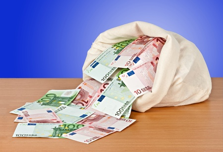 Bag with euro photo