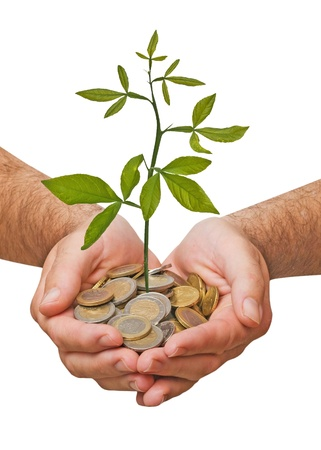 Palms with a plant growng from pile of coins Stock Photo - 9213247