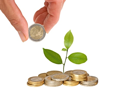 Citrus sapling growing from coins Stock Photo - 9539447