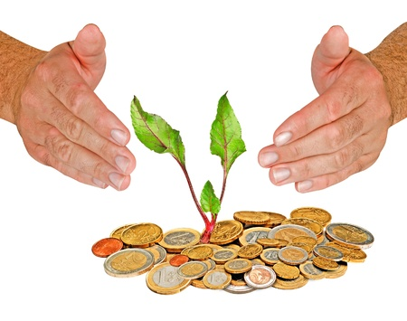 ecomomical: Beetrot growing from coins