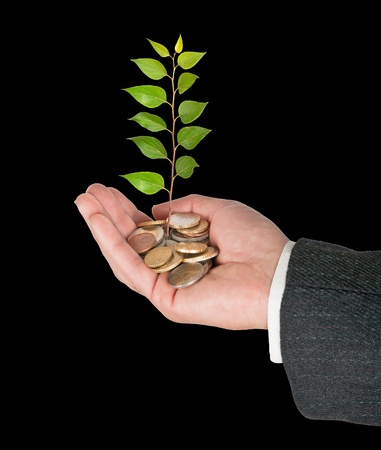 Palm with a sapling growng from pile of coins photo