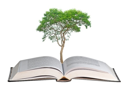 tree growing from book photo