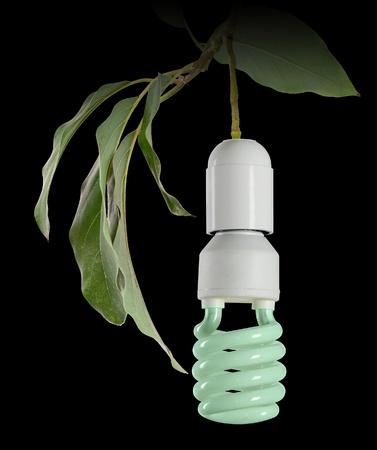 Symbol of green energy photo