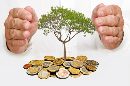growth protection: Hands protecting tree Stock Photo