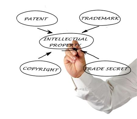 Presentación de la protección de la propiedad intelectual