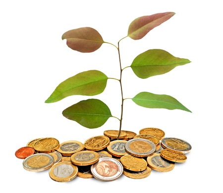 ecosavy: sapling growing from pile of coins