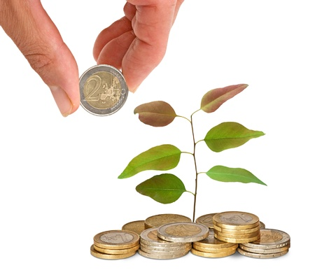 sapling growing from coins Stock Photo - 10735402