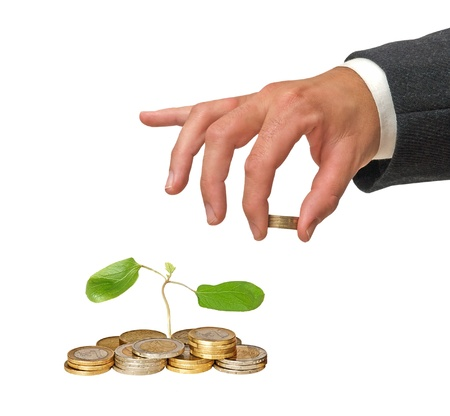 castor oil tree sapling  growing from pile of coins Stock Photo - 10832544