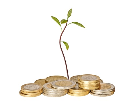 avocado seedling growing from pile of coins Stock Photo - 10996222
