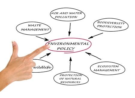 politican: Diagram of environmental policy