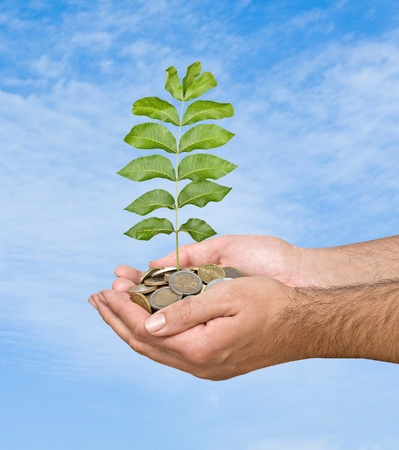 Palms with a sapling growing from pile of coins photo