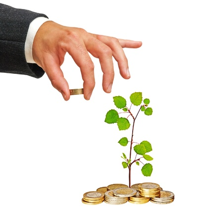 money issues:  sapling growing from coins