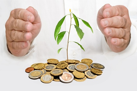 Hands protecting avocado seedling growing from pile of coins photo