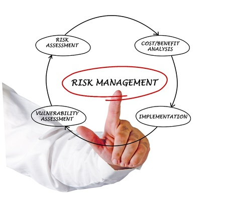 Diagram of risk manager photo